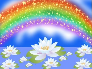 Rainbow and Water lily contest